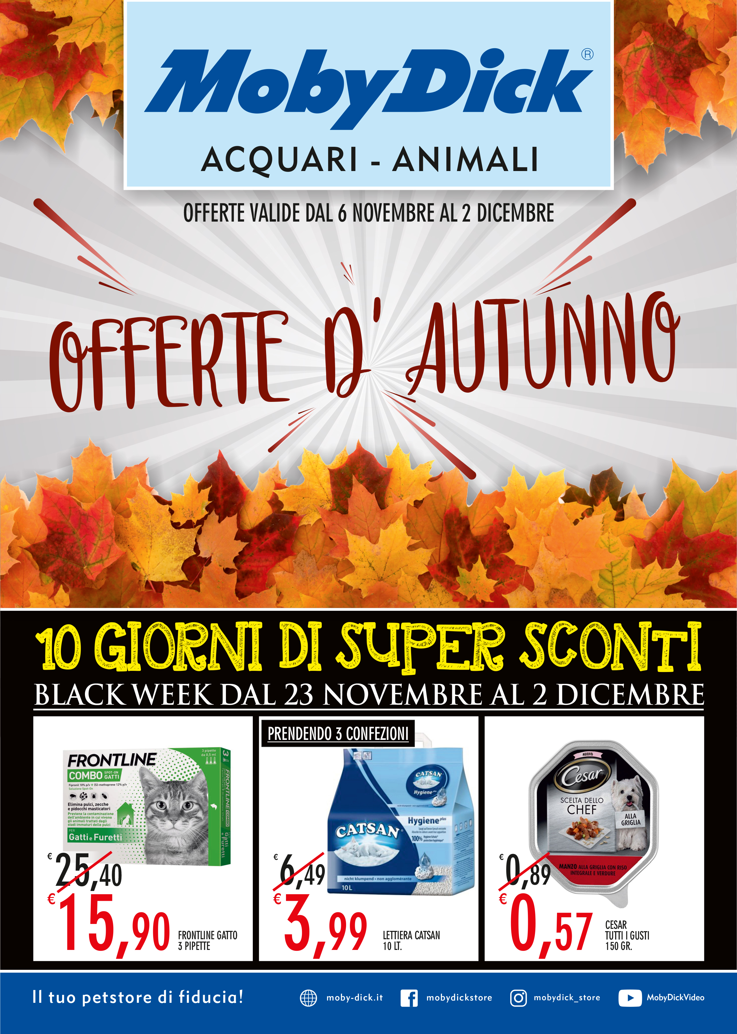Offerte D'autunno Moby Dick